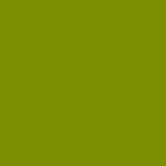 Century Solids Guacamole (CS-10-GUACAMOLE) von Andover