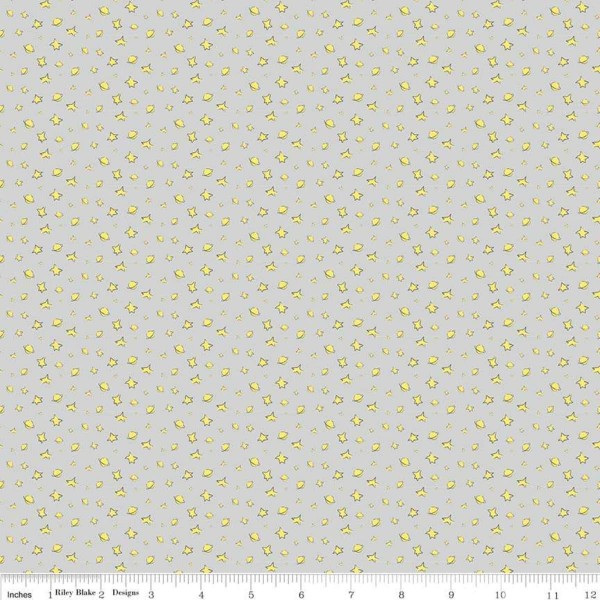 Little Prince Stars Grau (C6793-Gray) von Riley Blake