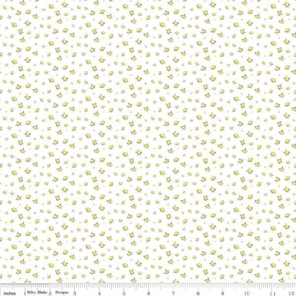 Little Prince Stars Weiß (C6793-White) von Riley Blake