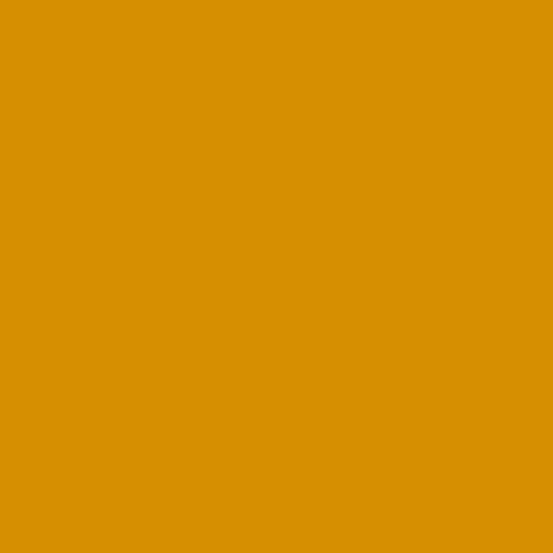 Century Solids Butternut Squash (CS-10-BUTTERNUTSQUASH) von Andover